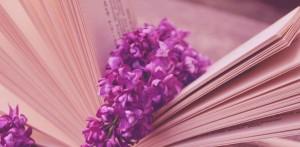 Lilac Slider
