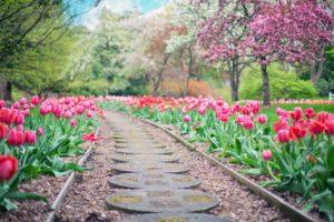 Garden path-self care blog post